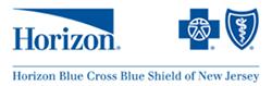 HorizonBlue-Logo-300x90