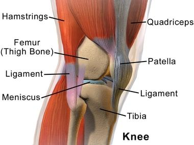 Knee Pain Treatment in NJ | Pain Management Doctor, Specialist