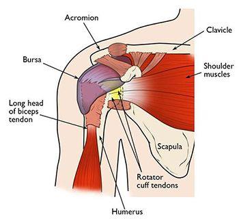 Shoulder Pain Treatment in NJ | Pain Management Doctor, Specialist