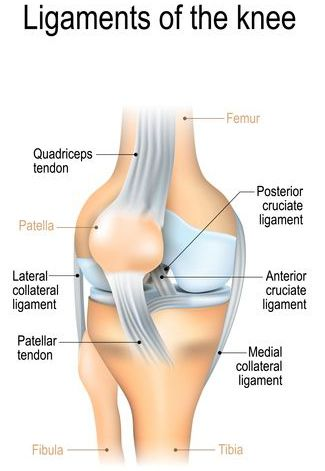 Sprained Knee Treatment in NJ | Pain Management Doctor, Specialist